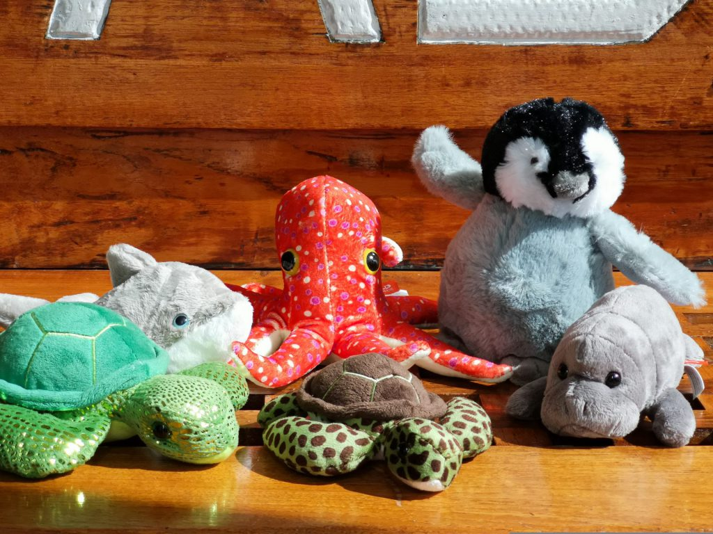 På en bakgrund av mellanmörkt trä finns kramdjur uppställda. På bildens vänstra sida syns en grön sköldpadda delvis, bakom den en grå delfin. I mitten längst bak finns en röd bläckfisk. Till höger längst bak finns en pingvinunge i grått, vitt och svart med ena vingen upplyft mot mitten. Längst till höger framför pingvinen syns en sjöko delvis. Framför bläckfisken finns en mindre grön sköldpadda med bruna fläckar och brutn skal. Vita delar av stora bokstäver syns i bildens övre kant.